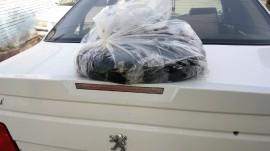 خودرو حامل موادمخدر با تیراندازی پلیس زمین گیر شد