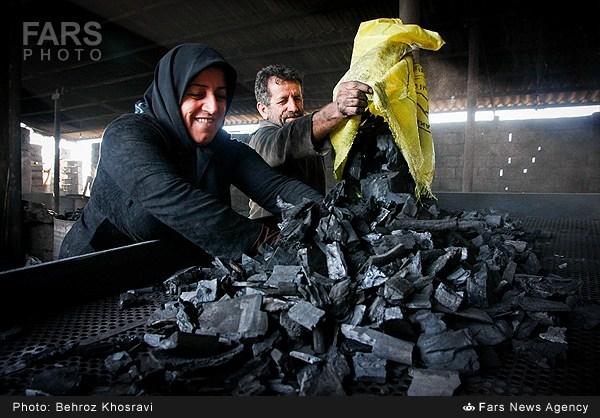 مفهوم قلب در مجازی شمال نیوز :: تصاویر/ کارگاه تهیه ذغال در آمل