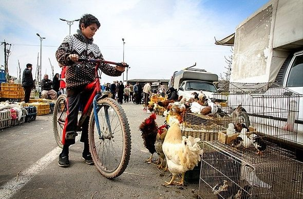 تصاویر : بازارهای محلی مازندران در آستانه نوروز