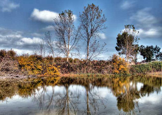 طبیعت پاییزی میانکاله