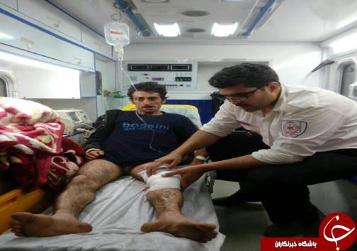 حمله خرس به چوپان در کیاسر + تصاویر